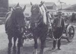 Fuhrbetrieb 1927 mit den Pferden Max und Moritz